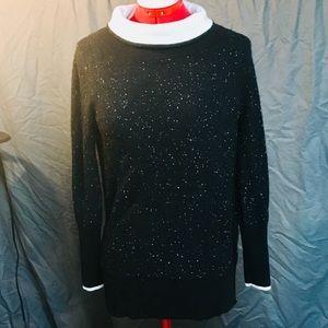S/P Rag and Bone Sweater